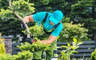 Quelle est la différence entre un paysagiste et un jardinier ?