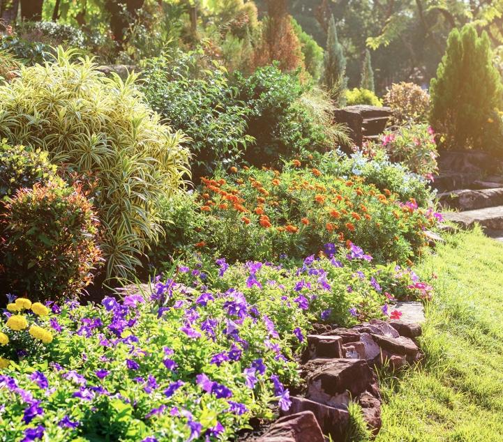 Le Jardin, la biodiversité et les éléments naturels