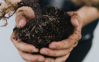 Devenir jardinier paysagiste – Tout savoir